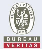 veritas_logo_bu.jpg